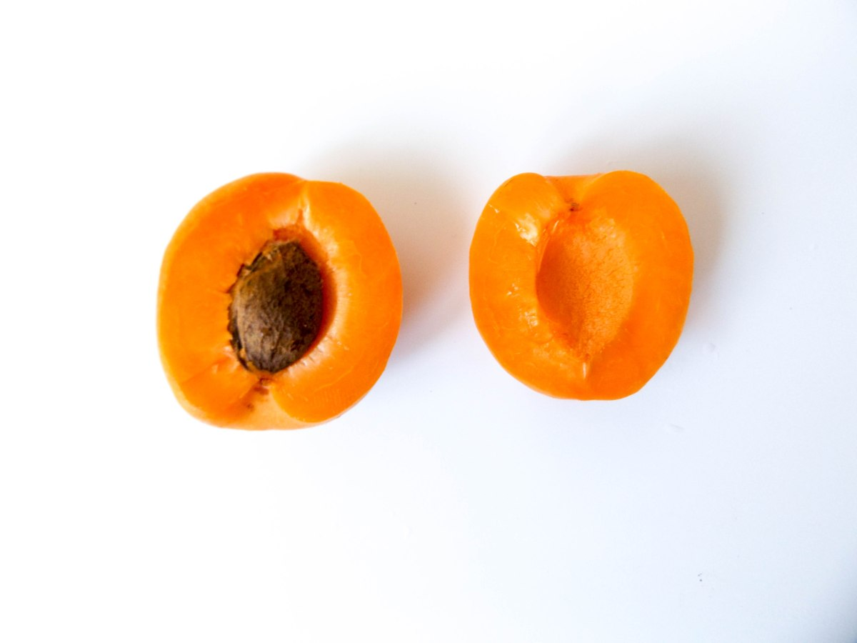 apricot (1 of 1)-5