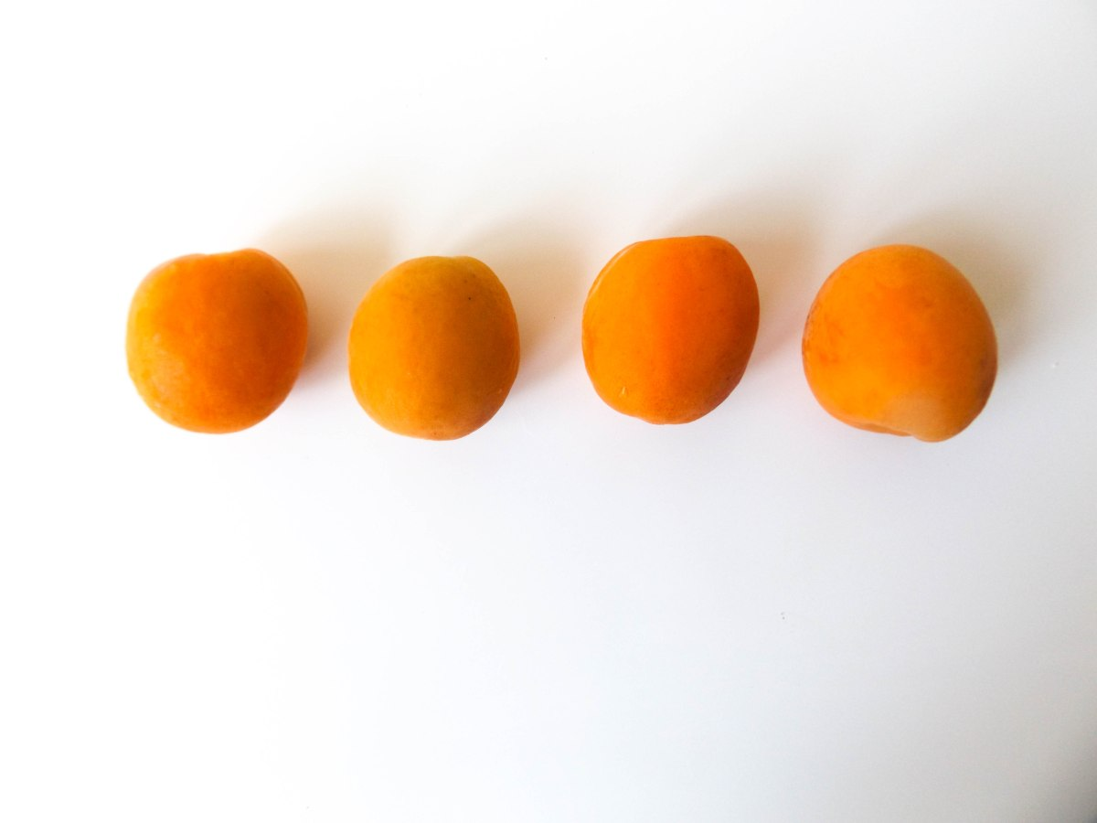 apricot (1 of 1)-6