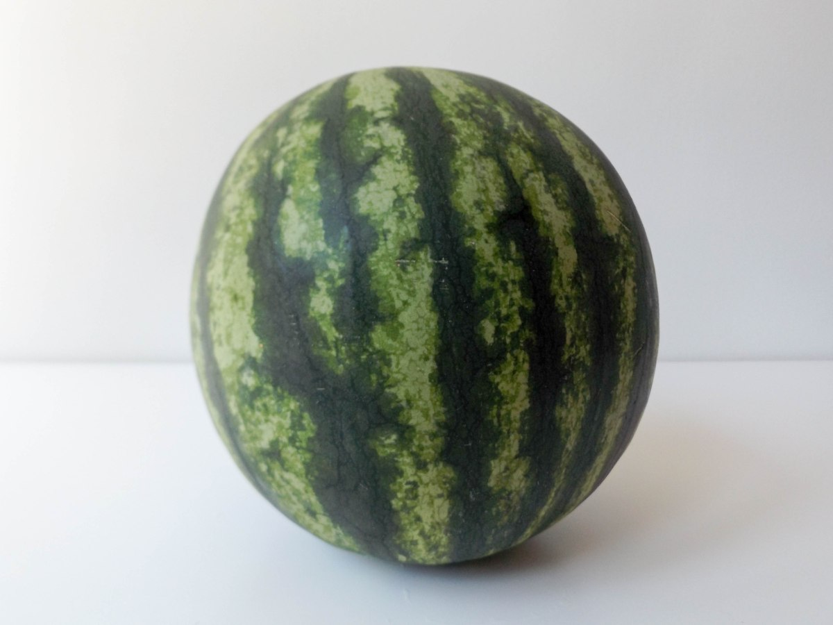 watermelon (1 of 1)-5