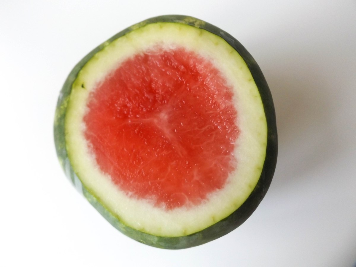 watermelon (1 of 1)-7