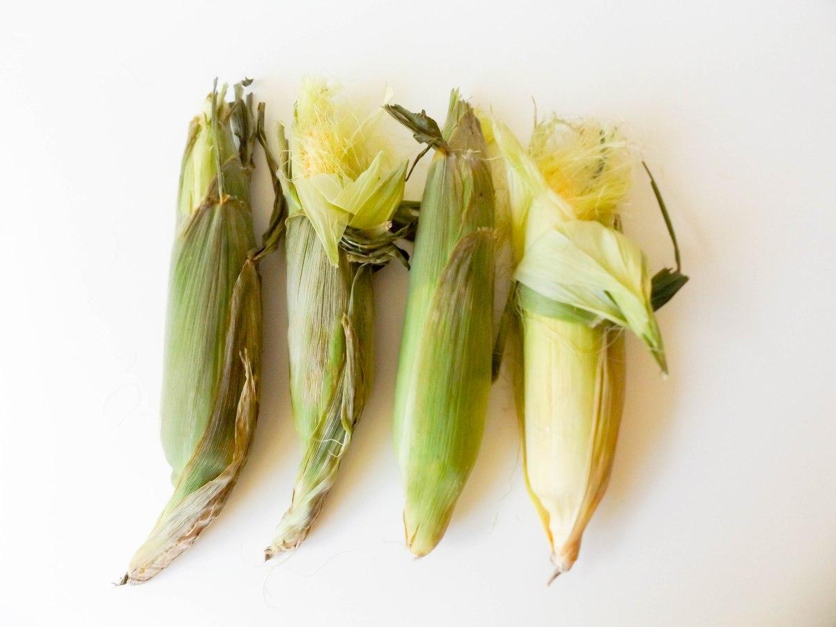 Corn (1 of 1)-3