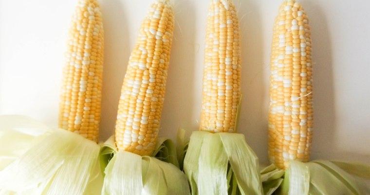 Featured Ingredient: Corn