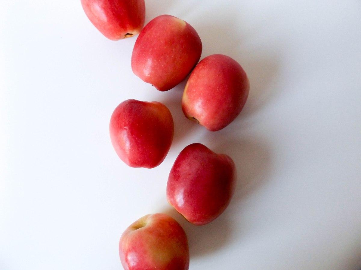 apple-cranberry-pie-1-of-1-17