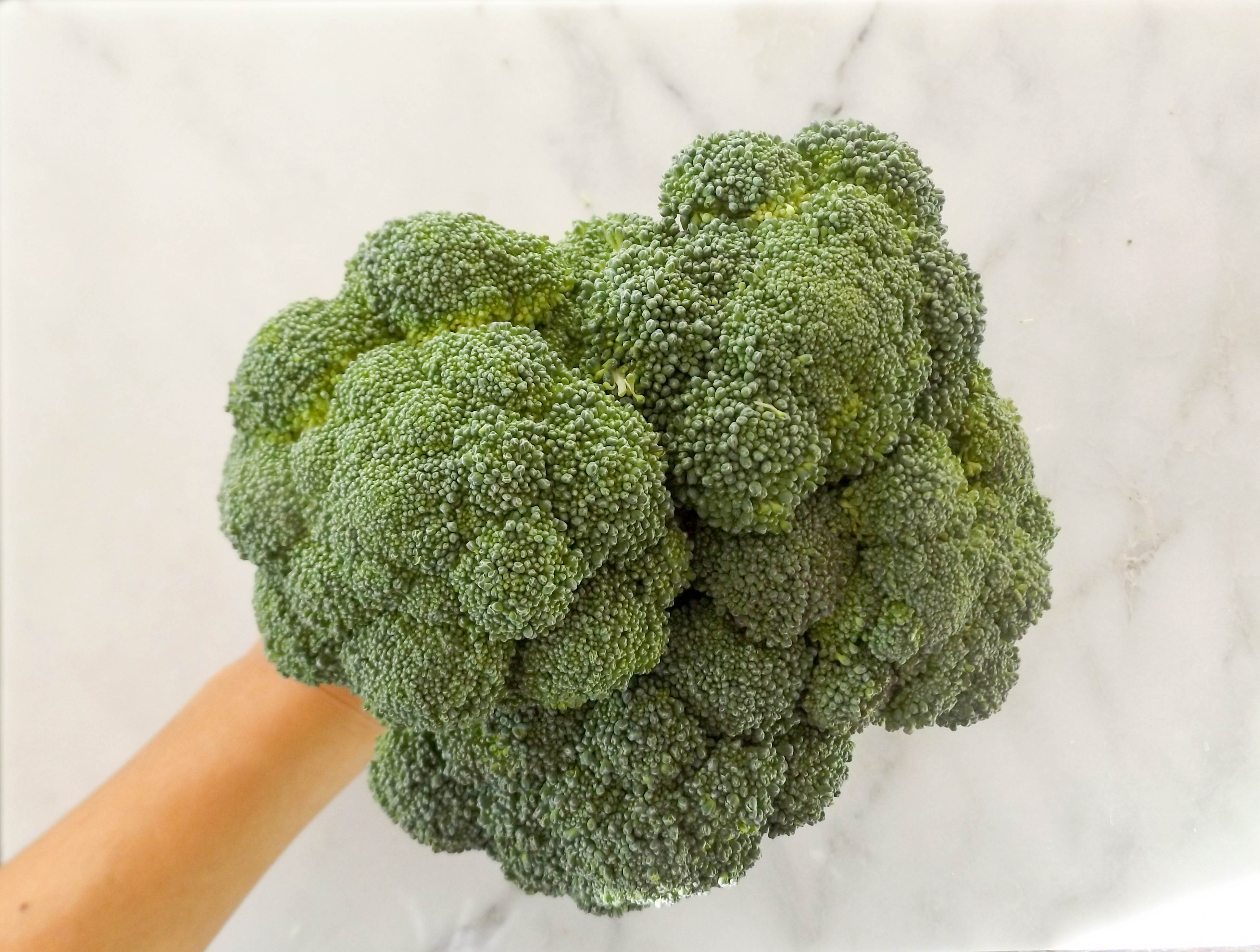Featured Ingredient: Broccoli