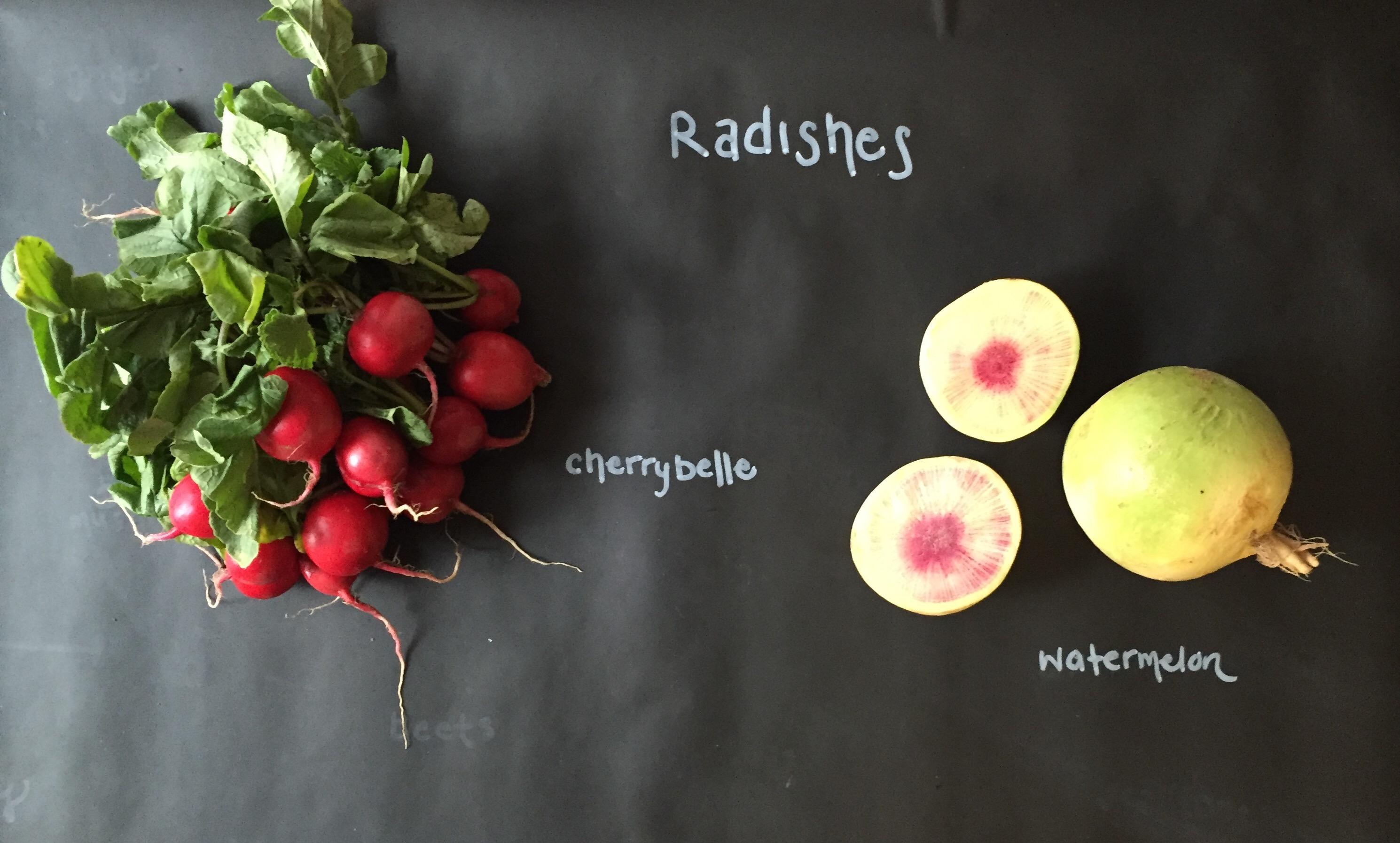 Featured Ingredient: Radishes