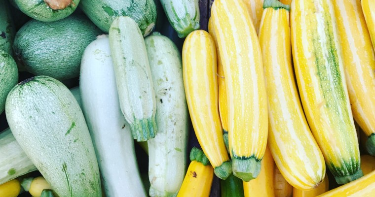 Featured Ingredient: Summer Squash