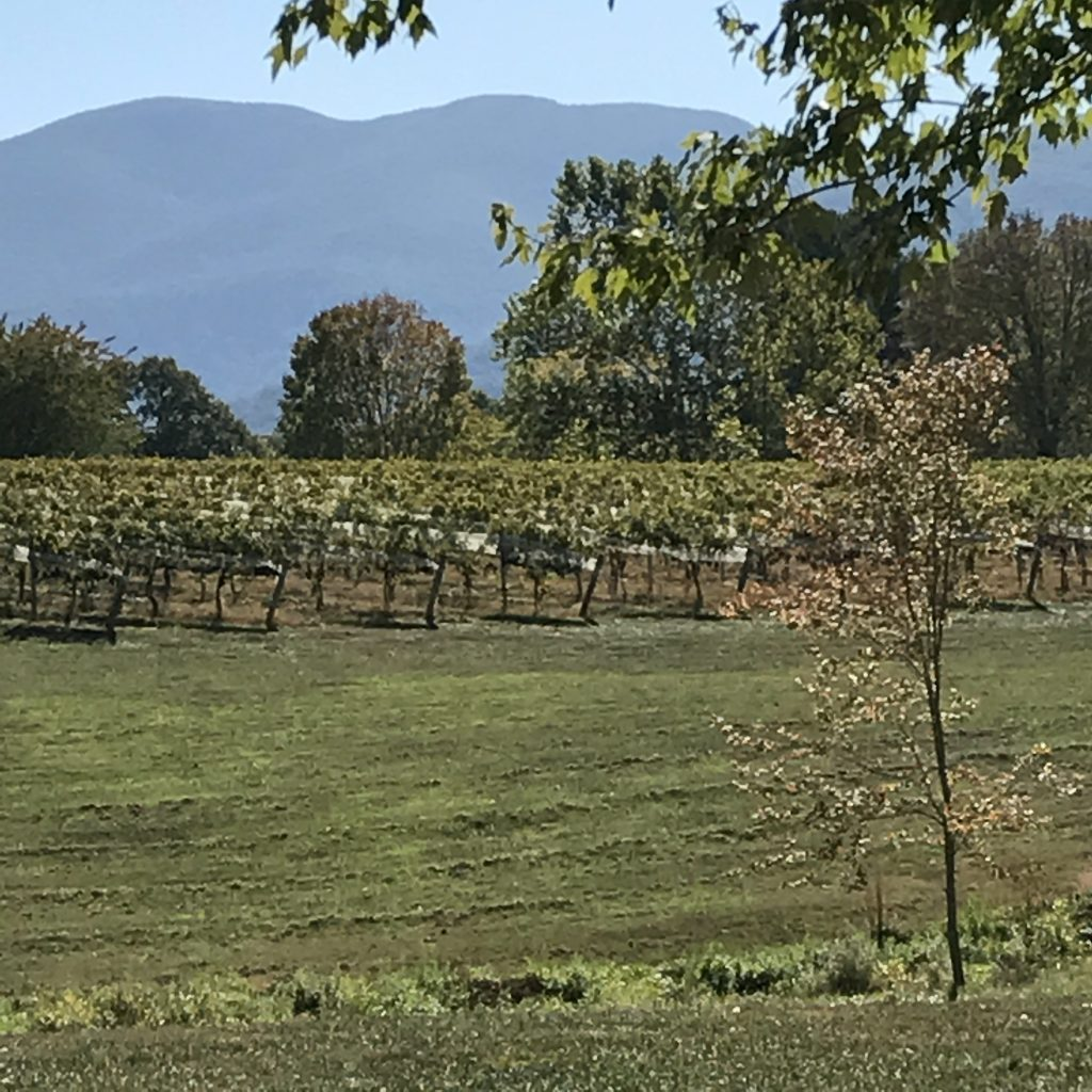 Veritas Vineyards, Charlottesville, VA