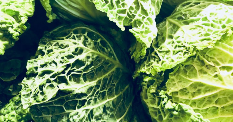 Featured Ingredient: Cabbage