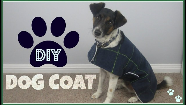 Sewing Patterns For Dogs Step Step Sewing Diy Dog Coat Youtube