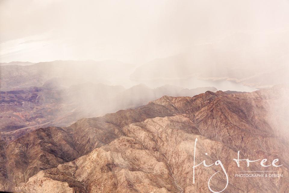 Desert rain - close up