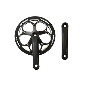 Fiido D11 Chainring