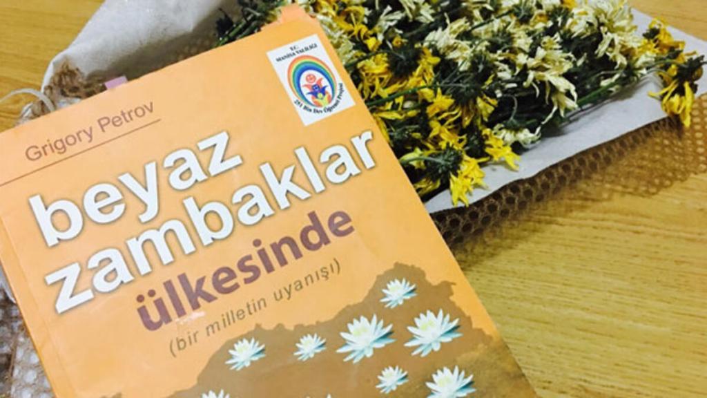 Atatürk, beyaz zambaklar ülkesinde, roman, kitap, müfredat