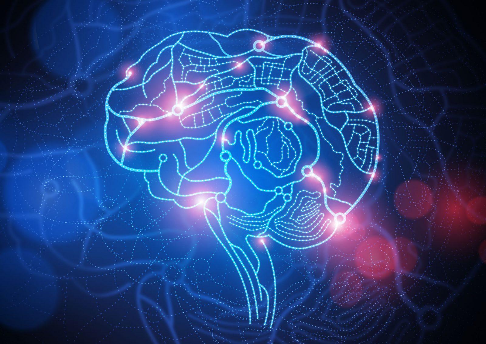 beyin, zihin, nöronlar, kılavuz, NLP
