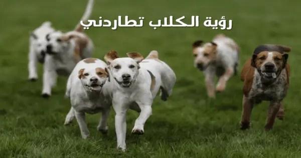 تفسير رؤية الكلاب تلاحقني في المنام ورؤية الهروب منهم في