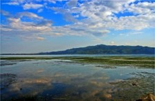 Kerkini_lake_2 (1)