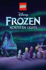 LEGO Frozen Northern Lights 2016