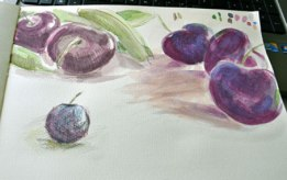 Cherries and pea-pods: watercolour & watersoluble pencil, 2016