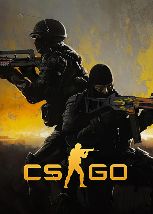 NO1 Counter Strike Global Offensive VPN Code Buying Store