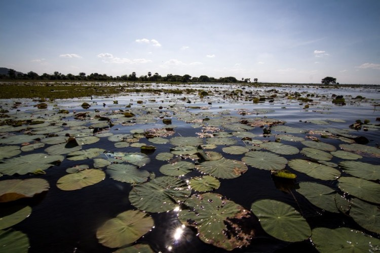 贡奔培水库(Kamping Puoy Reservoir)