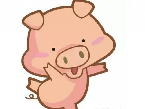 【不要隨便叫別人豬】因為(豬)的意義很重......看完你就知道了! - COCO01