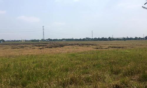 Chưa đầy 4 tháng, đất phía Tây Sài Gòn đã tăng giá gấp đôi
