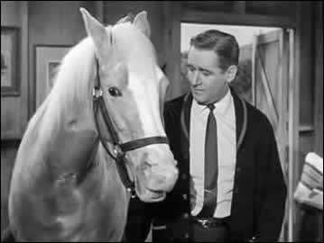 Mister Ed and Alan Young.