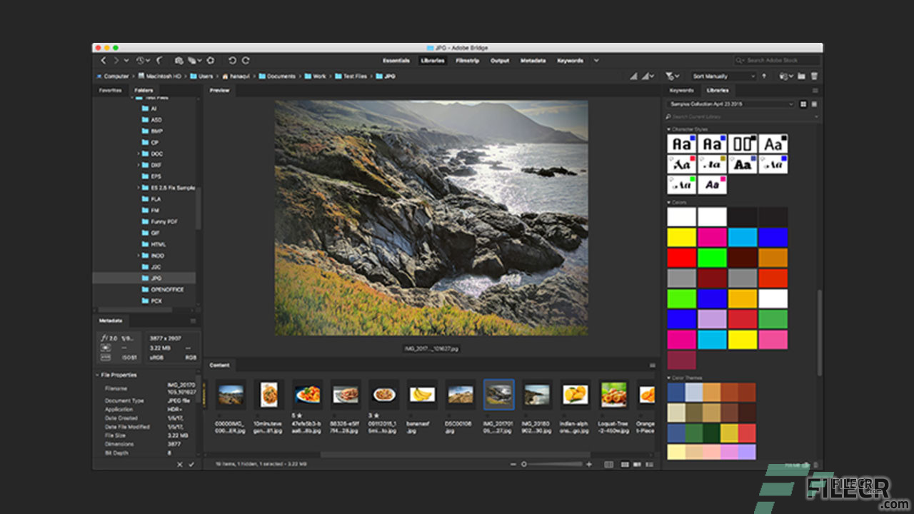 Scr2_Adobe Bridge CC_Free download