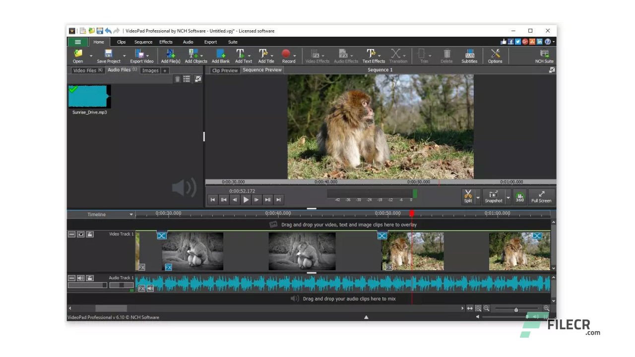Scr3_NCH-VideoPad-Video-Editor-Professional_free-download