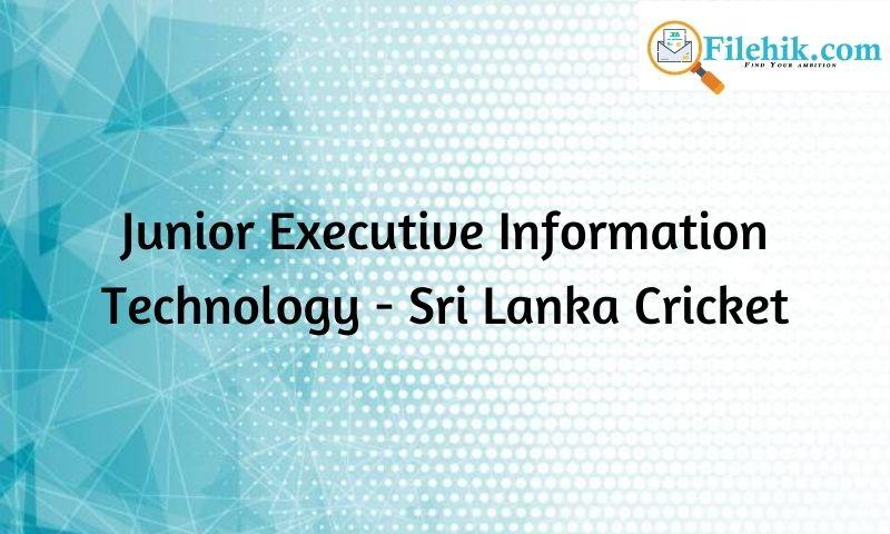 Junior Executive – Information Technology