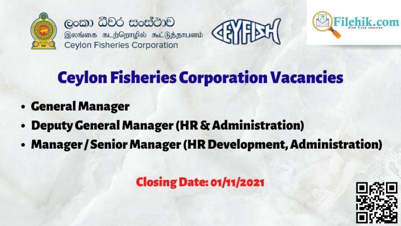 Ceylon Fisheries Corporation Vacancies