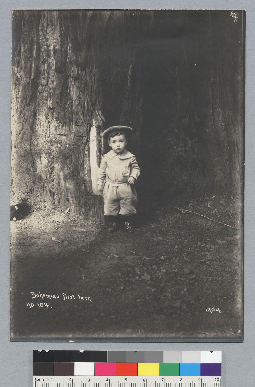 Image result for bohemian grove strange