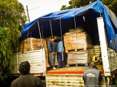 ASA también apoya en la labor humanitaria.