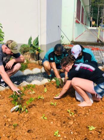 Grupo realizou o plantio de flores e verduras no canteiro da Secretaria de Saúde de Benedito Novo. [Foto: Reprodução].