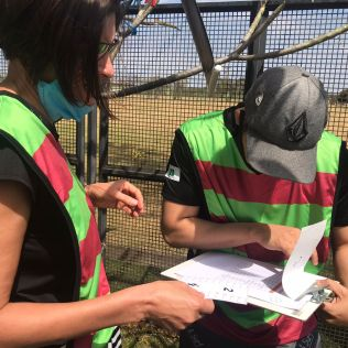 Gincanas fortaleceram o senso de equipe dos participantes. (Foto: Divulgação)