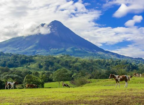 Horses on pasture near Arenal Volcano