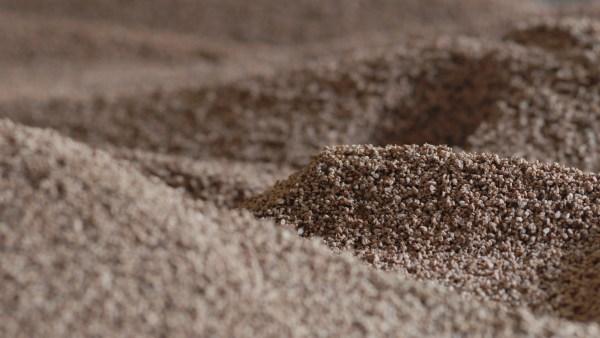 Bioenergia, a energia da biomassa benéfica ao meio ambiente