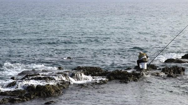 Pesca artesanal e a sua importância na agropecuária