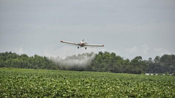 Agricultura comercial: tecnologia avançada e produção em larga escala