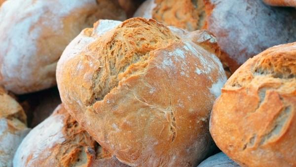 Espelta é opção saudável e sua busca cresce junto ao trigo tradicional