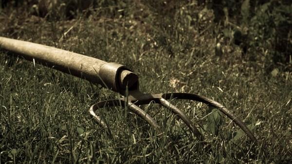 Forcado é ferramenta agrícola de grande utilidade para o manejo