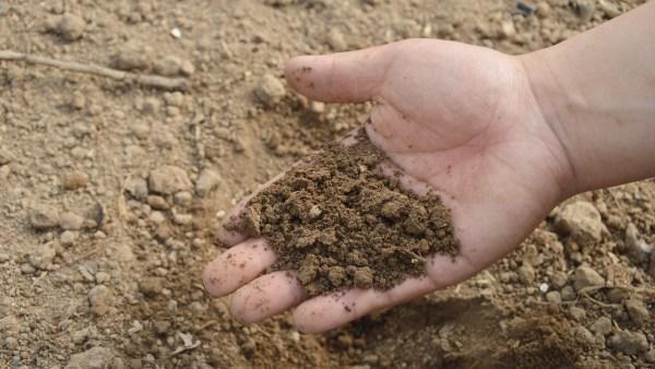 Fosfato é uma composição química muito utilizada na agricultura