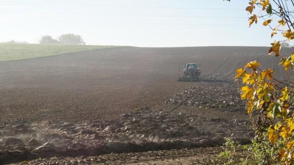 Grade pode ter diferentes finalidades no mercado agrícola