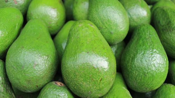 Abacate e os principais benefícios da fruta para o organismo
