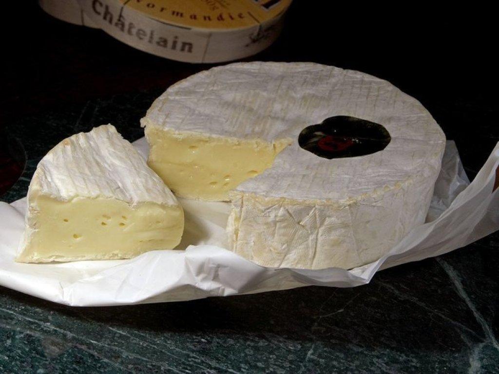 Tipos de queijo: queijo camembert