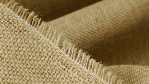 Juta tem folhas serreadas e é muito utilizada em decorações e artesanatos