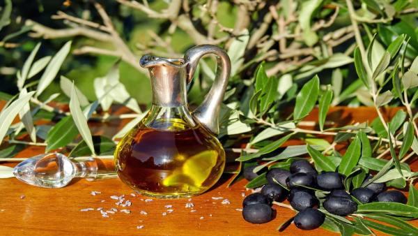 Óleo vegetal traz benefícios e pode ser extraído de variadas fontes