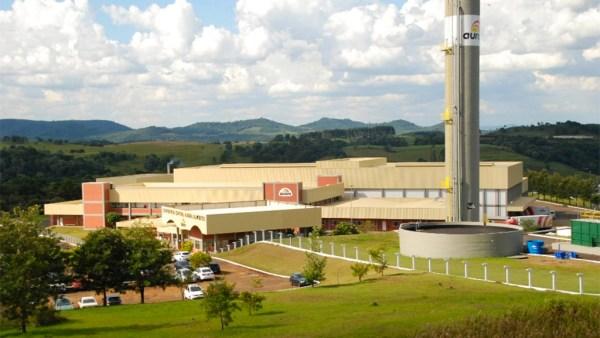 Aurora Alimentos é um dos grandes nomes da produção suína no Brasil