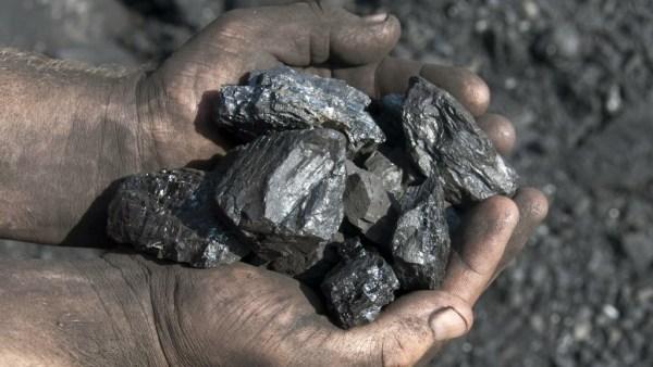 Carvão mineral é uma rocha sedimentar de energia não renovável