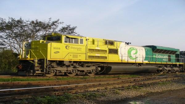 Eldorado Brasil se destaca na produção de celulose em território nacional
