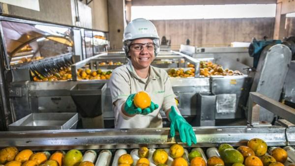 Fischer é uma das maiores na produção e exportação de suco de laranja